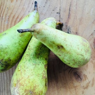 Poached pears 3