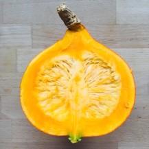 Pumpkin frittata 2
